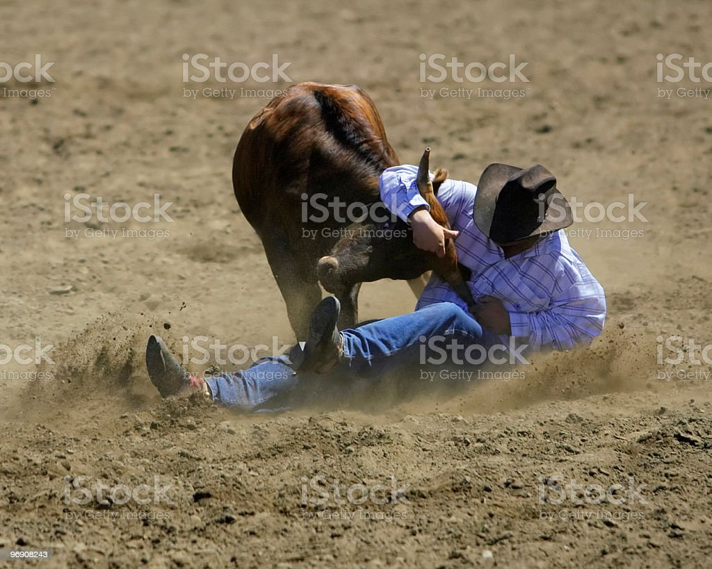 Steer Wrestler royalty-free stock photo