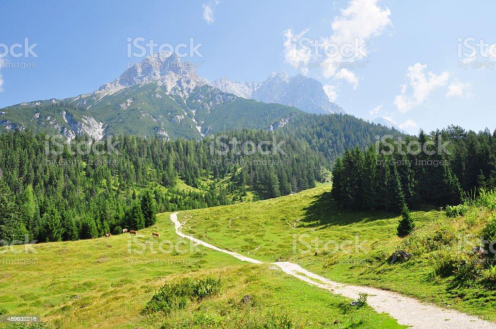 Steinernes Meer, mountain panorama, Saalfelden, Pinzgau, Salzburg, Austria stock photo