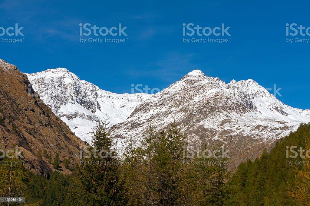 Stelvio National Park (Valle delle Messi) stock photo