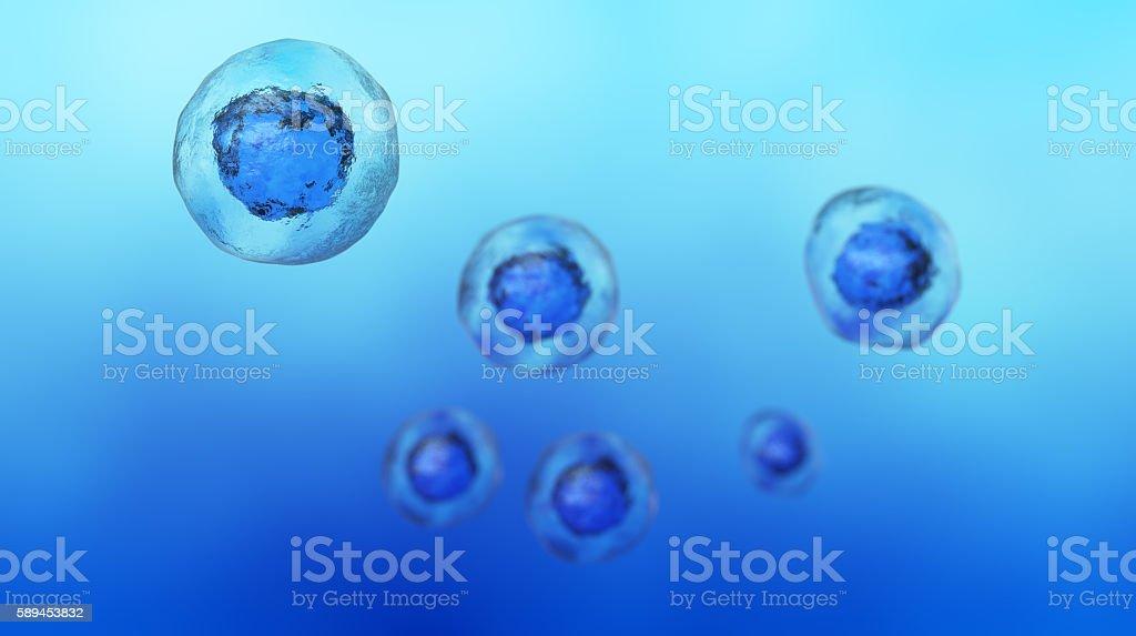 Stem Cell stock photo