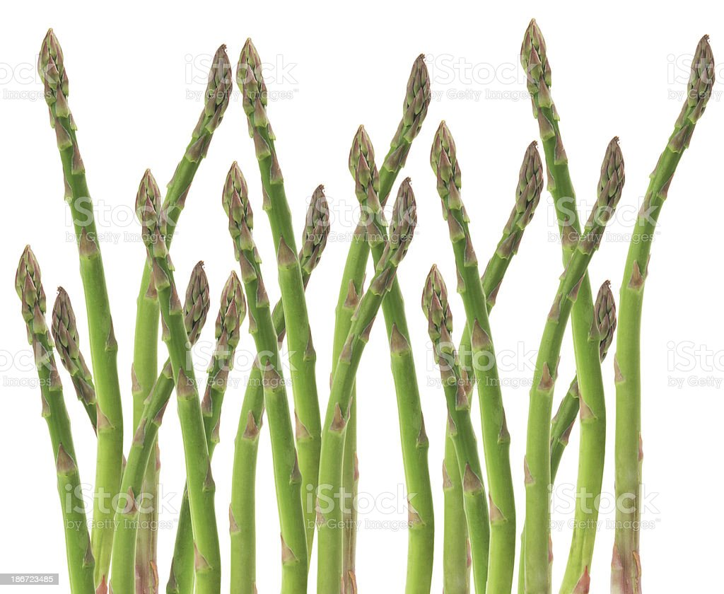Stems of Asparagus royalty-free stock photo