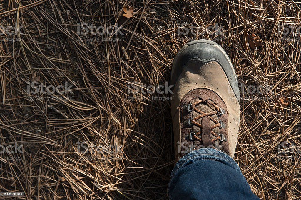 step to nature - trekking stock photo