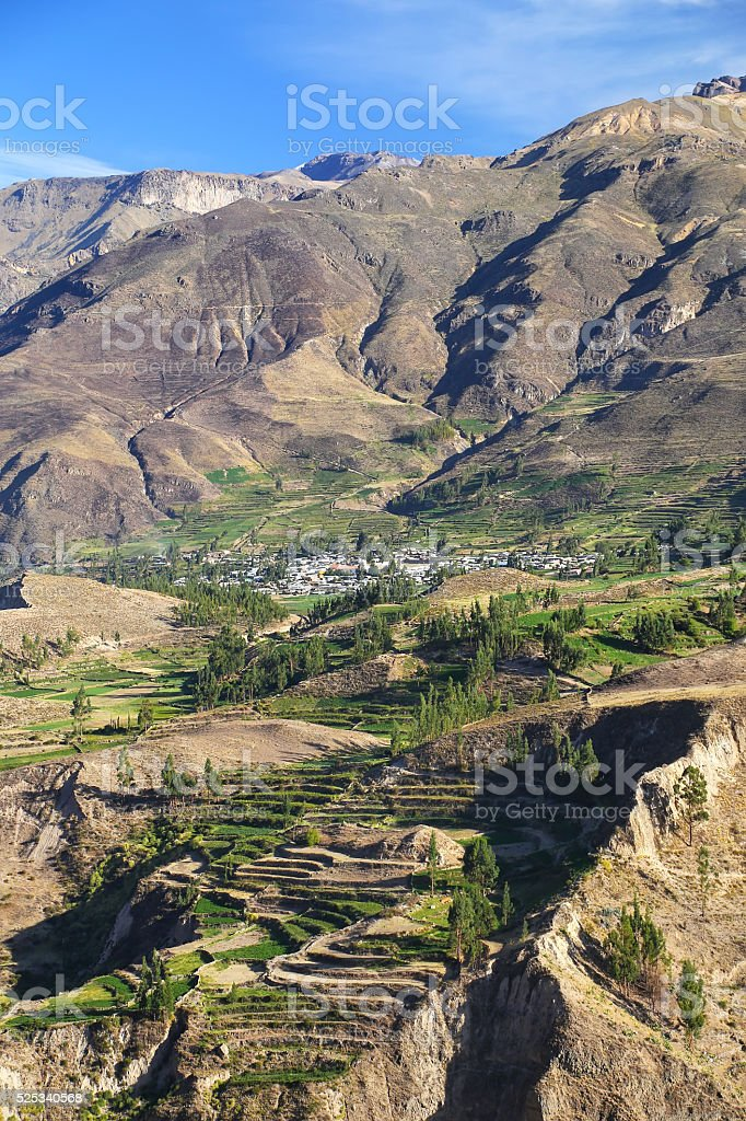 Stepped terraces in Colca Canyon in Peru stock photo