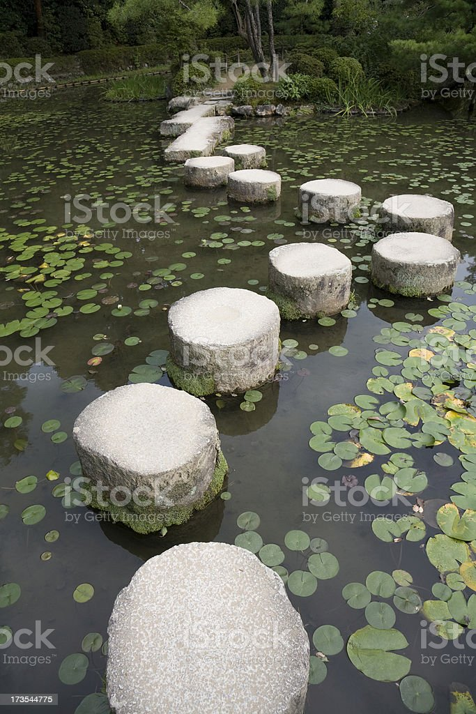 Stepping stones lily pads pond stock photo