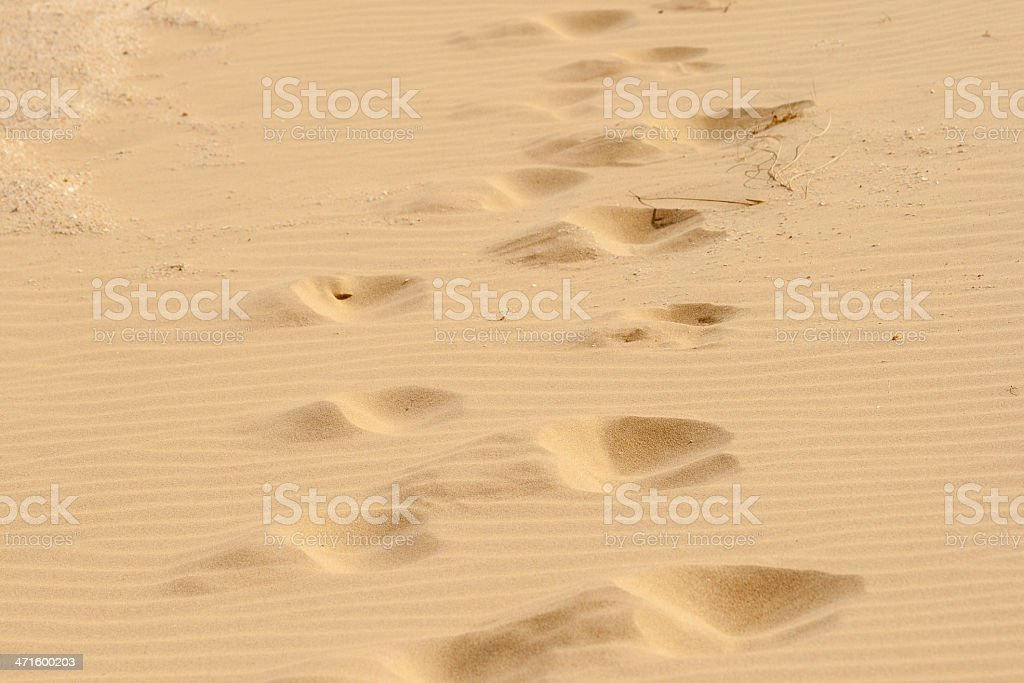 Steps in the hot sand. royalty-free stock photo