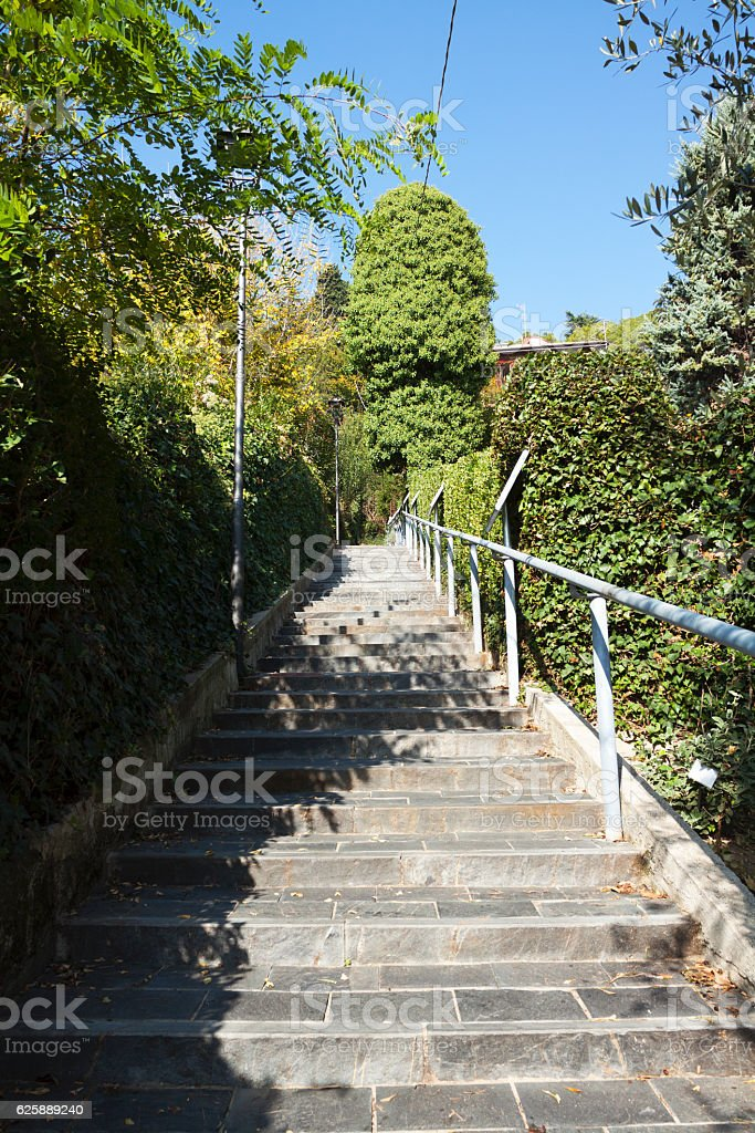 Steps to small botanic garden stock photo