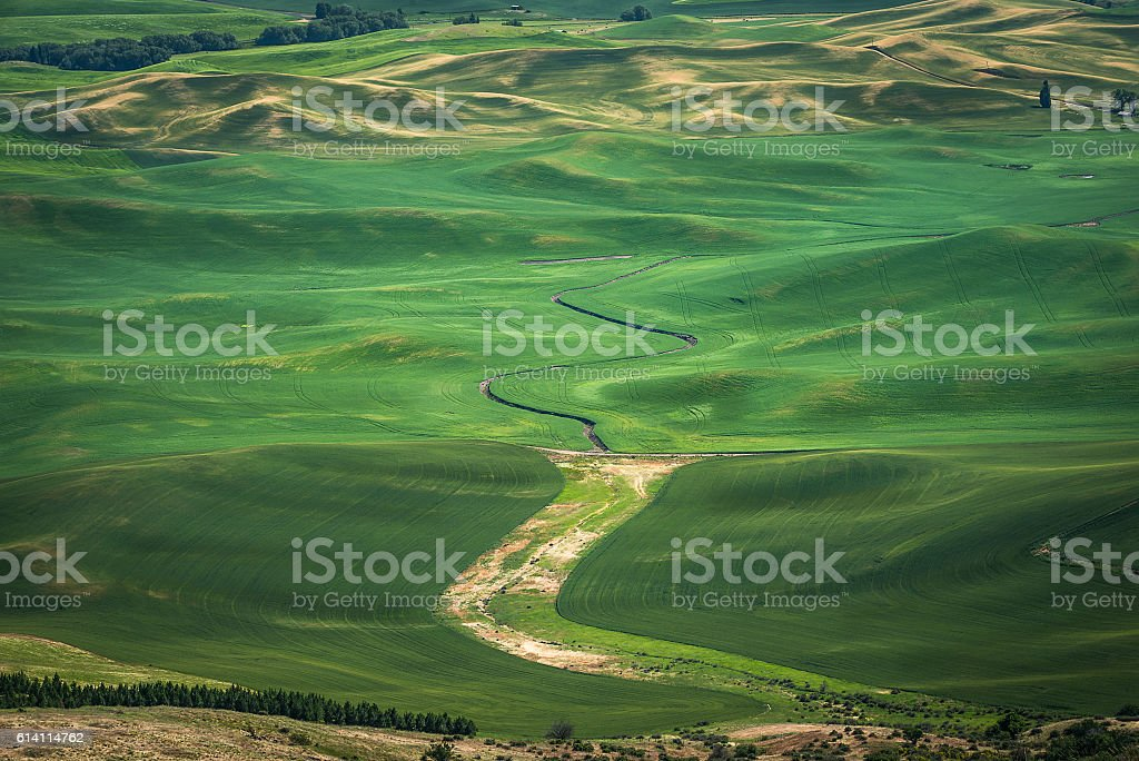 Steptoe Butte, Palouse Country stock photo