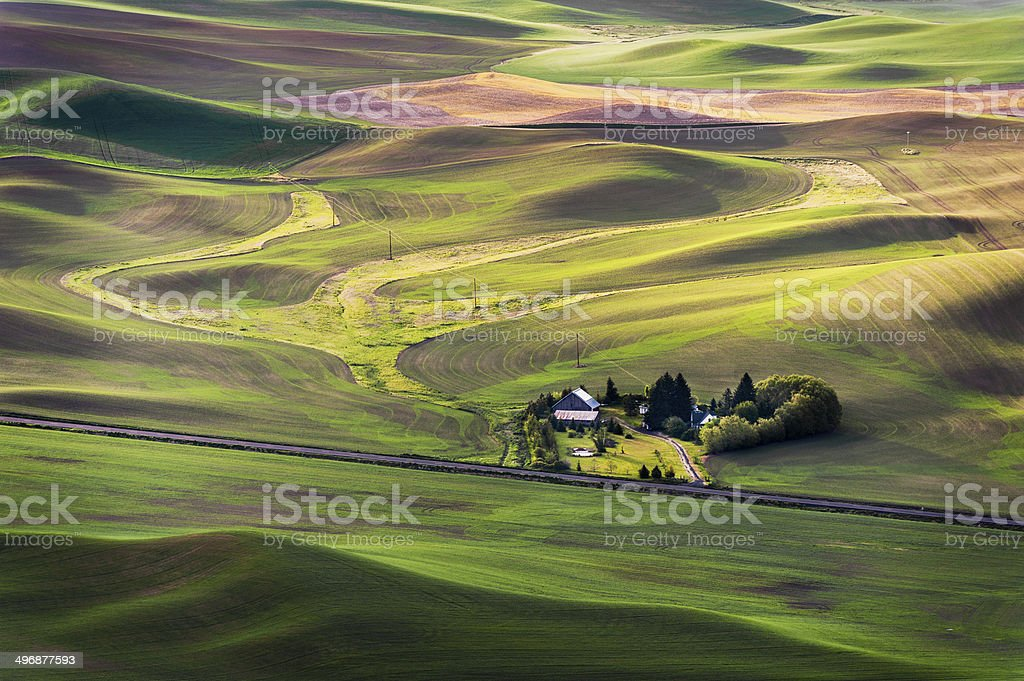 Steptoe Butte State Park. royalty-free stock photo