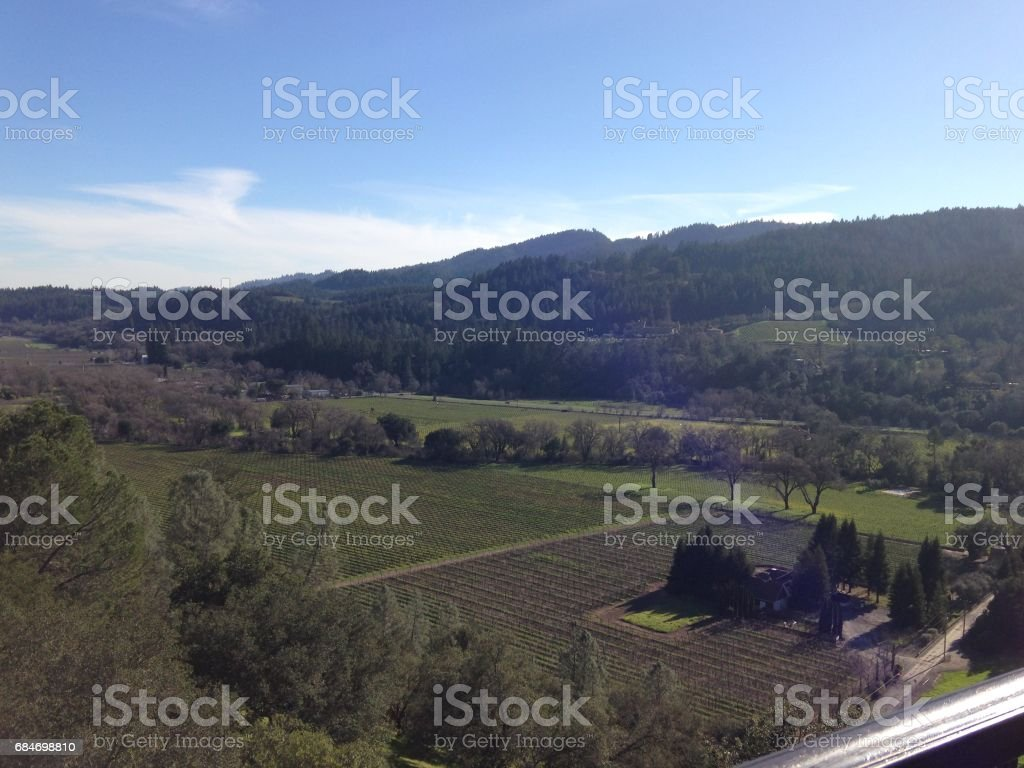 Sterling Vineyards stock photo