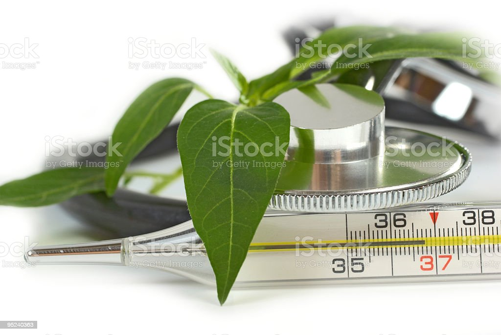 Stethoscope and medical thermometer royalty-free stock photo