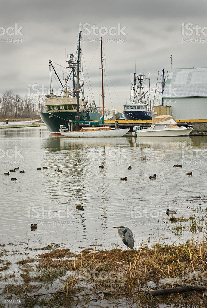 Steveston Harbor, Richmond, BC stock photo