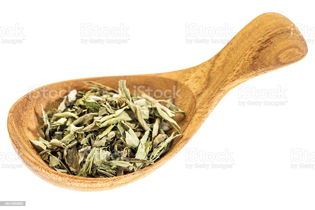stevia dried leaves on wooden spoon stock photo