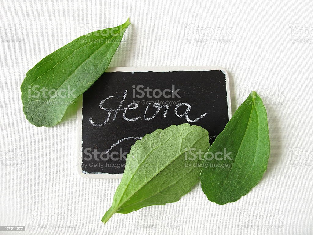 Stevia leaves and nameplate stock photo