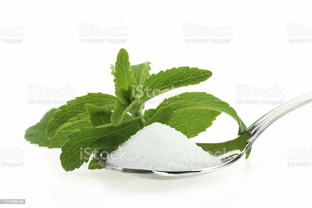 Stevia rebaudiana on a silver spoon stock photo