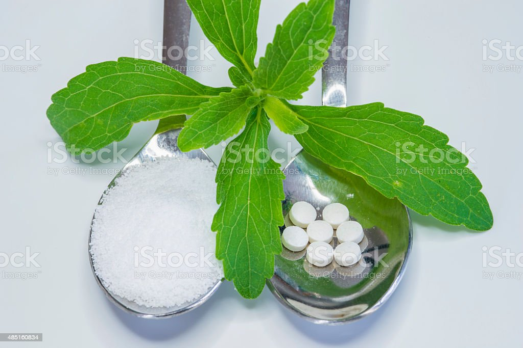 Stevia rebaudiana, support for sugar,tablets stock photo