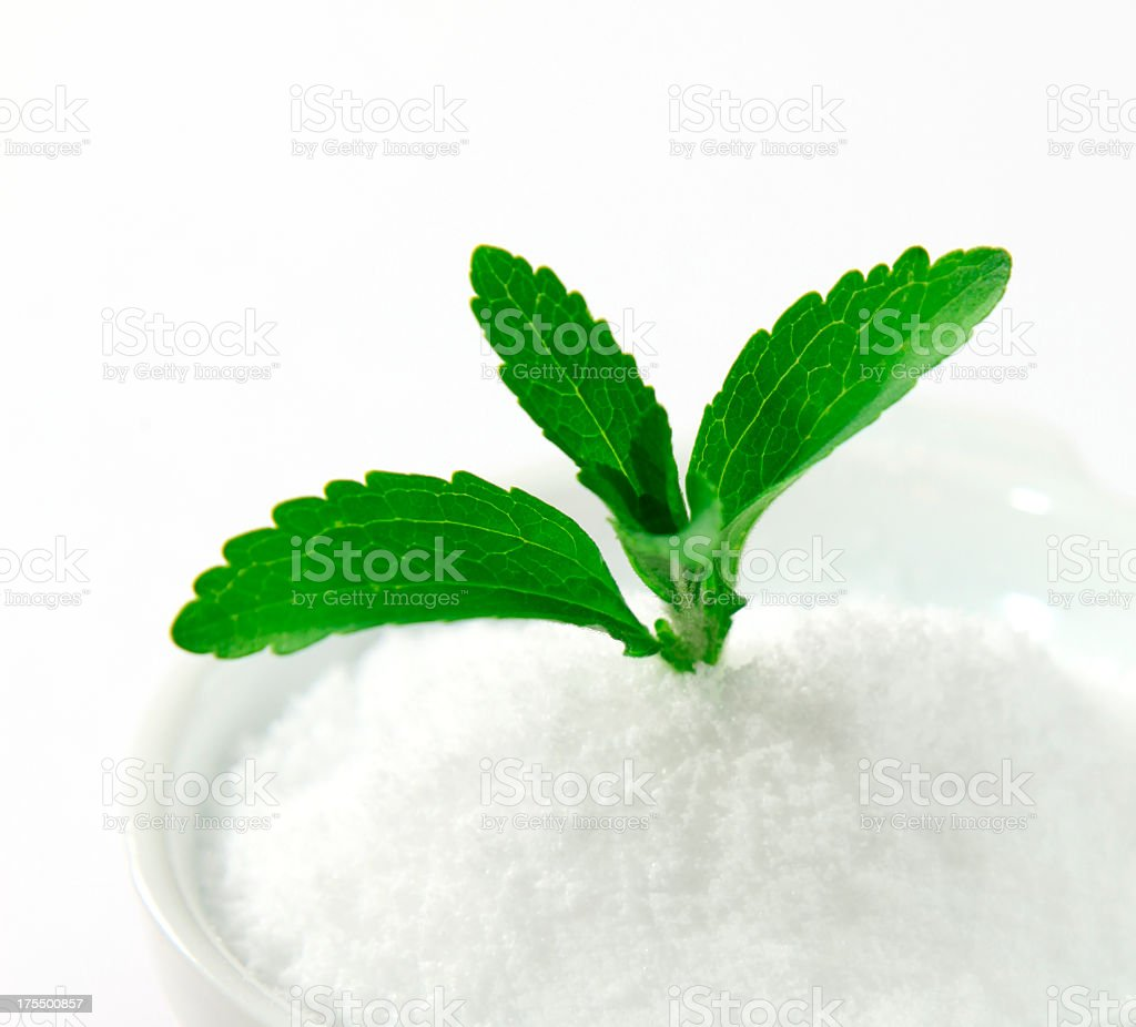 Stevia sprouting out of a white powder stock photo
