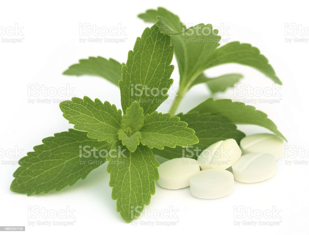 Stevia with tablets stock photo