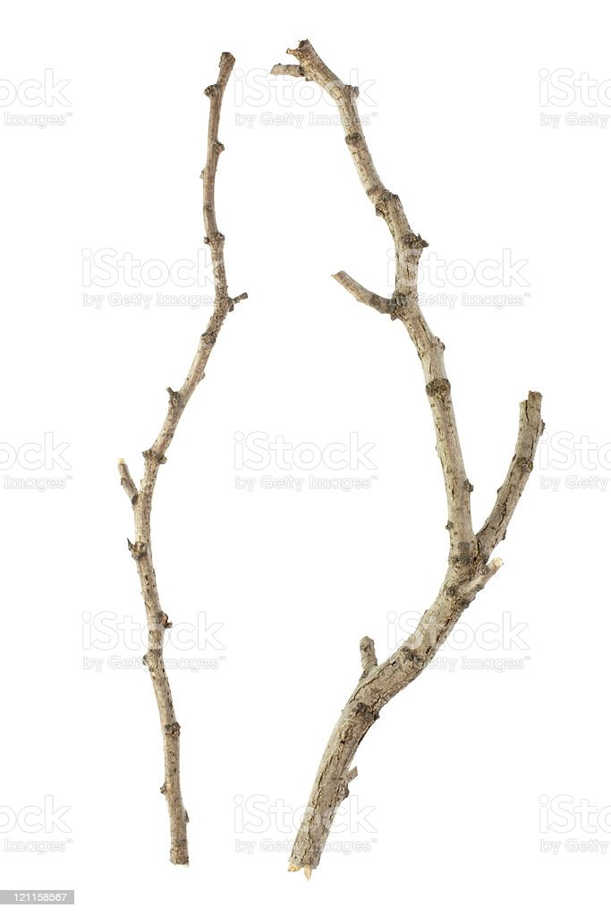 Stick stock photo