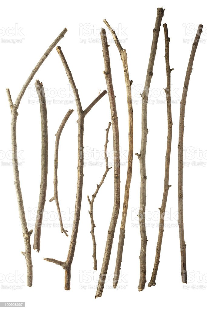 Sticks stock photo