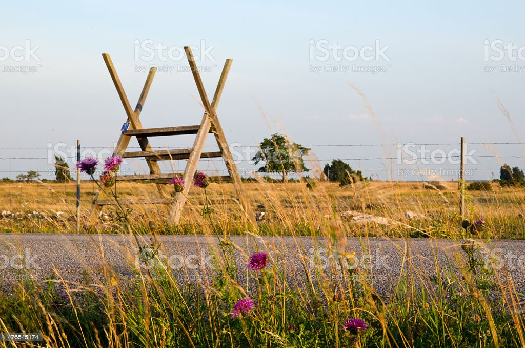Stile over barb wire with flowers stock photo