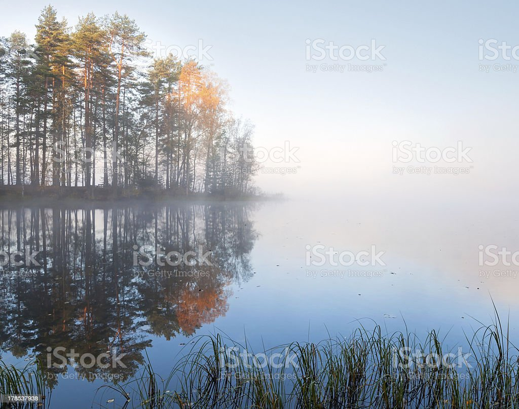 Still lake landscape with fog in cold autumn morning royalty-free stock photo