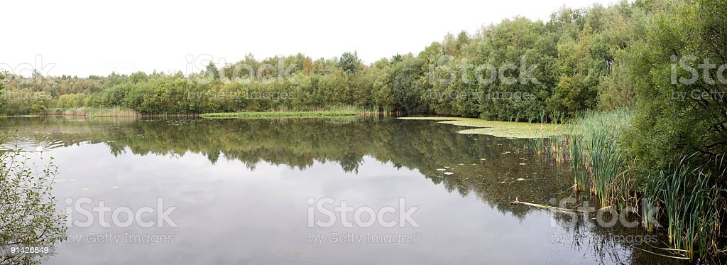 Still Lake royalty-free stock photo