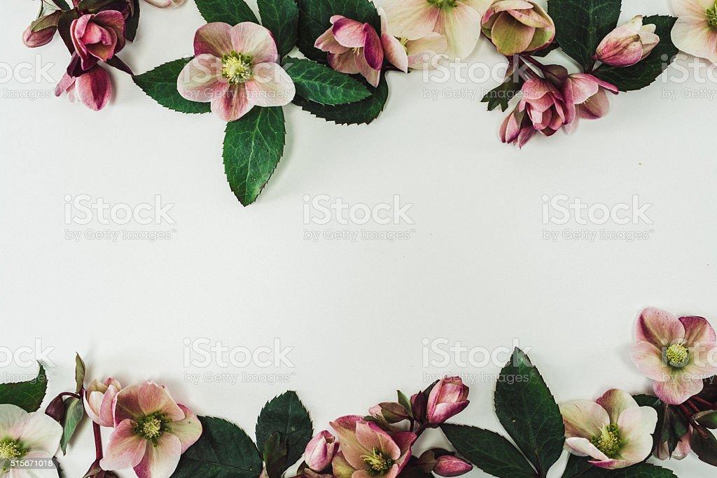 Still life arrangement of flowers as border stock photo