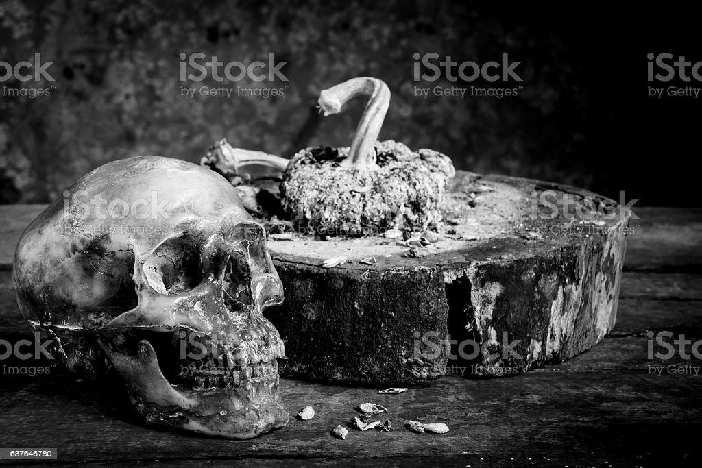 Still life black and white  human skulls on wood stock photo