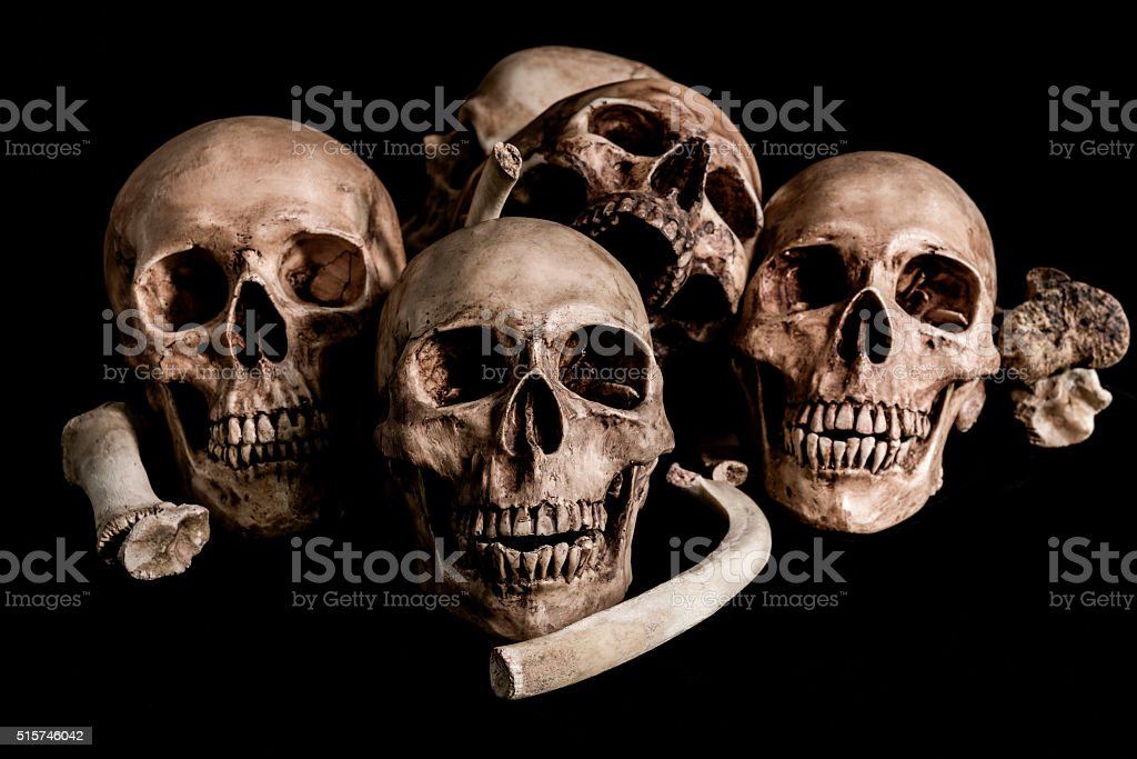 Still life Human skull and bones, genocides concept stock photo
