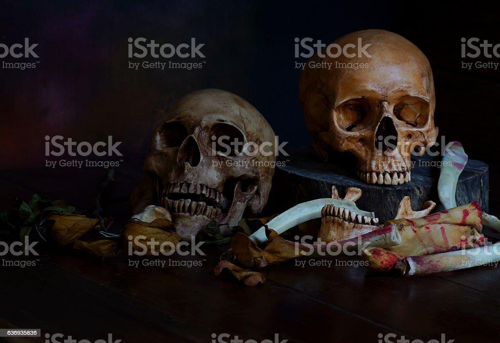 still life of pair of skull and bone stock photo