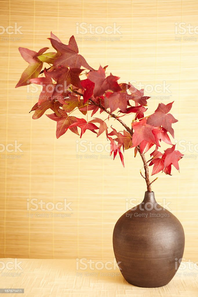Still life of red maple leaves in vase royalty-free stock photo