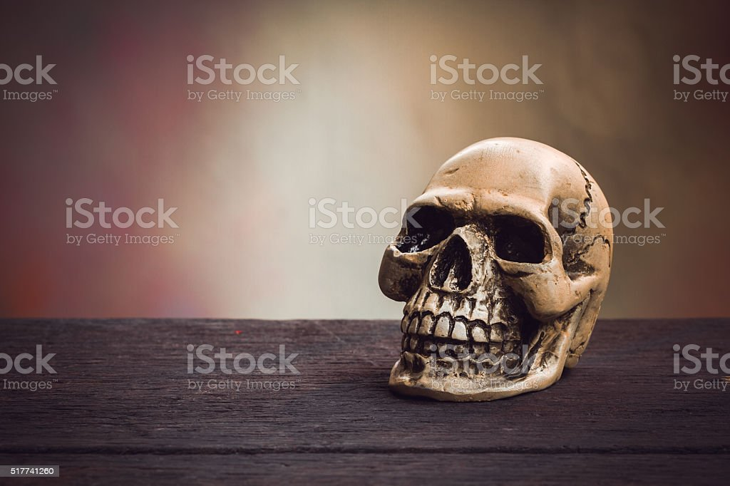 Still life photography  with human skull on wood background. stock photo