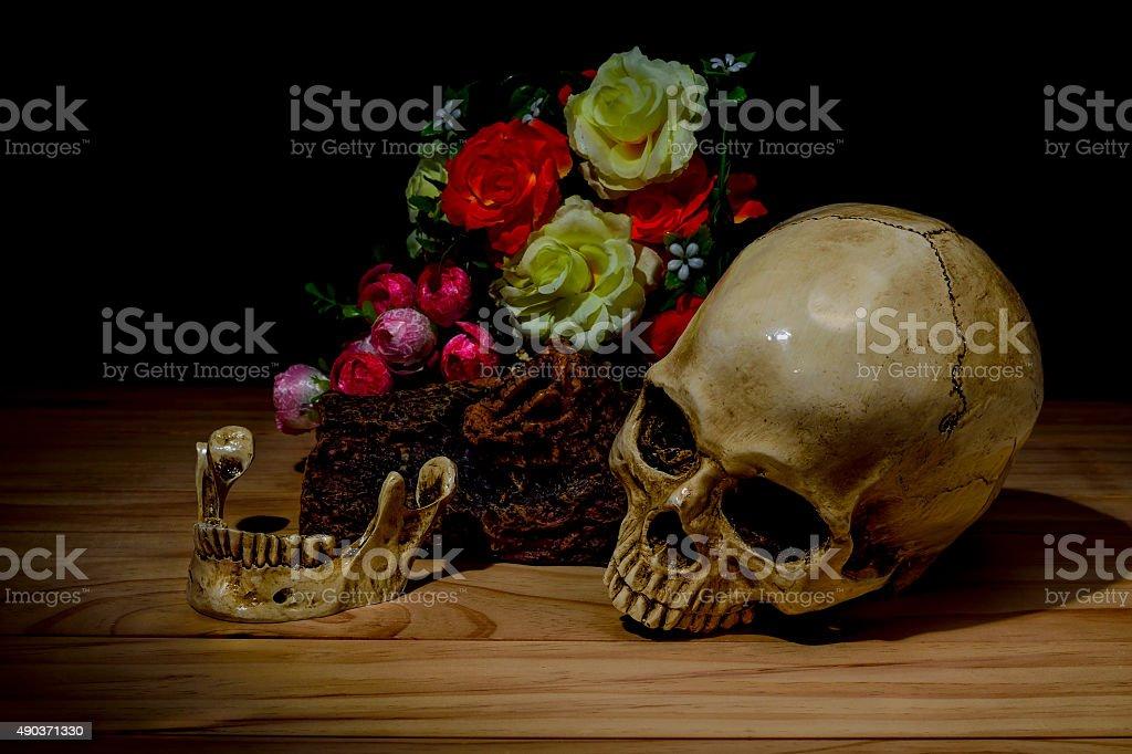 Still life white human skull on dark background stock photo