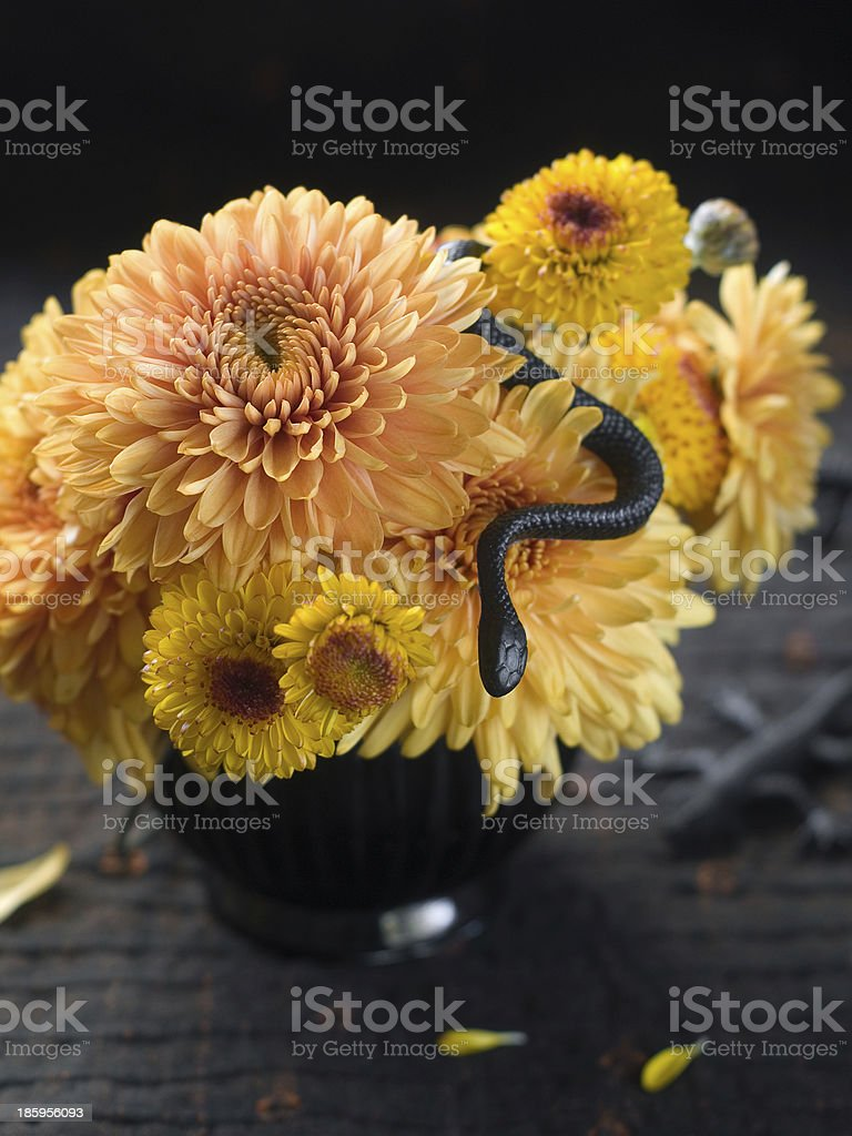 Still life with autum flowers stock photo