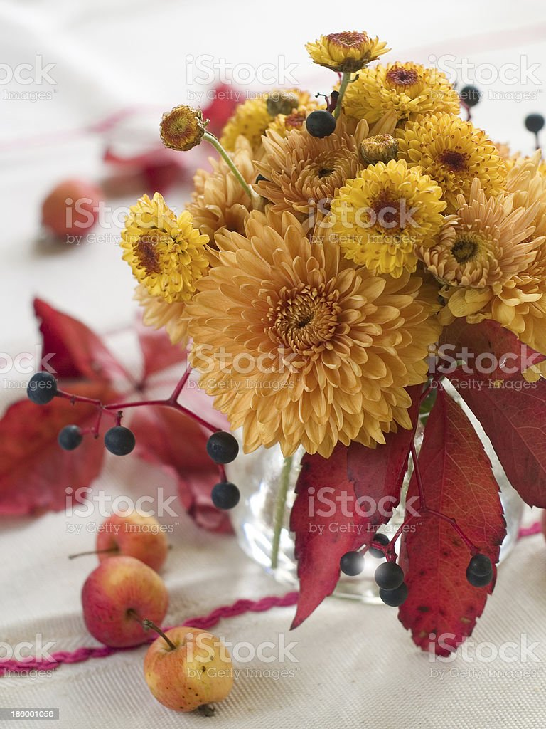 Still life with autum flowers royalty-free stock photo