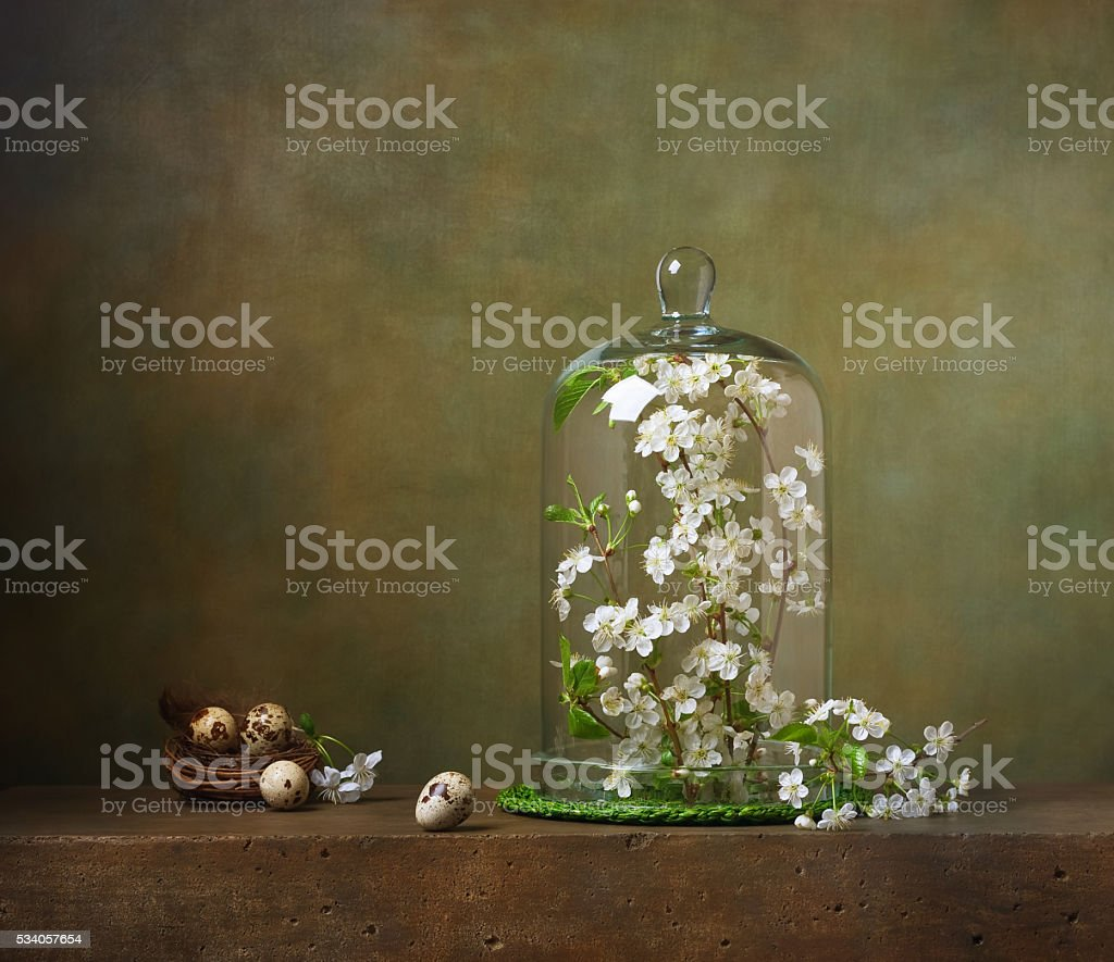 Still life with cloche with flowering tree branches stock photo