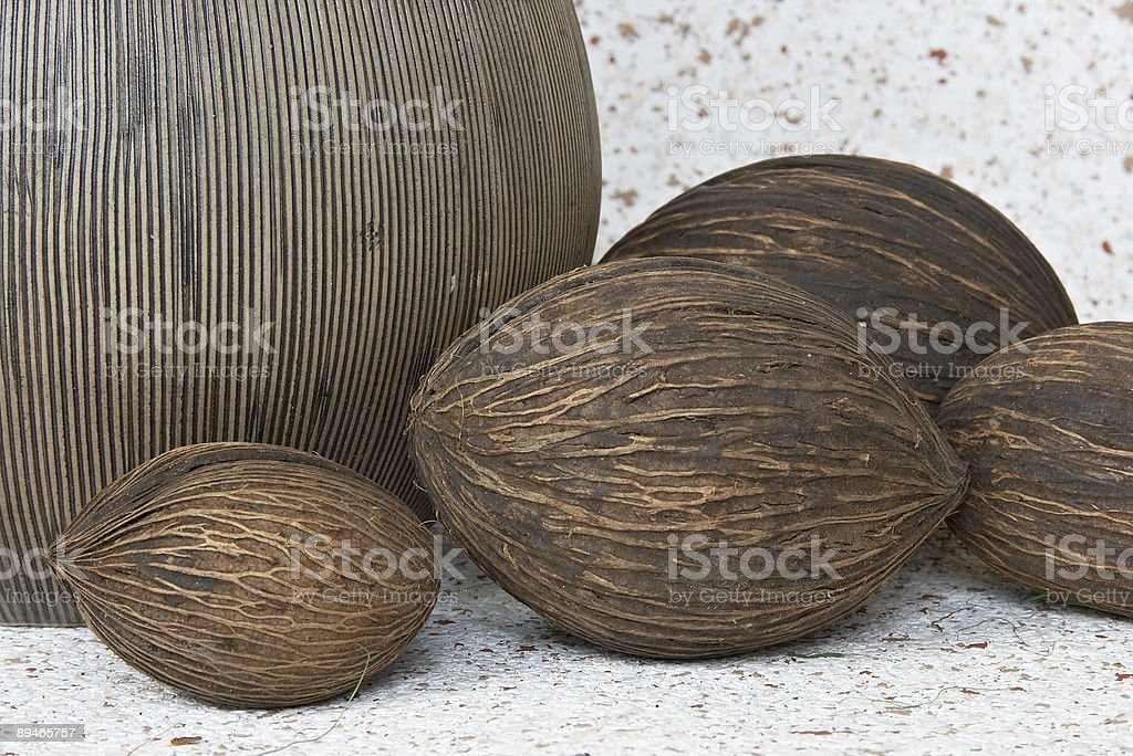 Still life with coconut stock photo