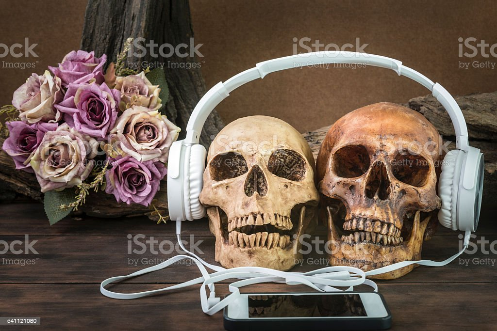 still life with couple skull listening to music stock photo
