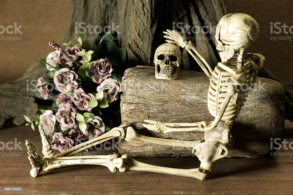 Still life with couple skull, love story set stock photo