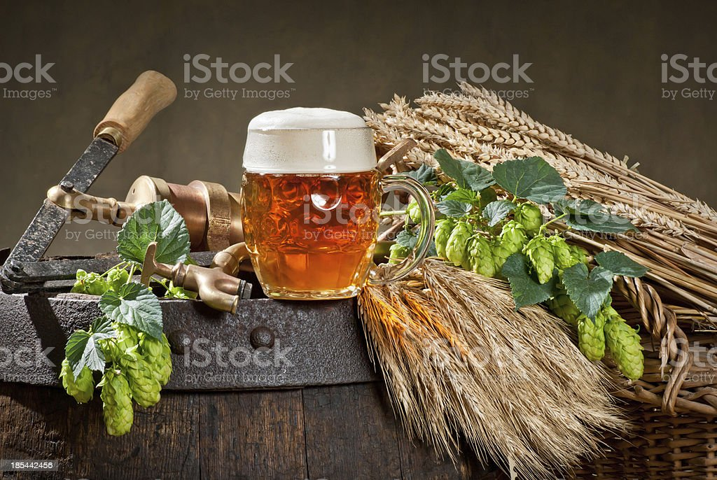 still life with hop cones royalty-free stock photo