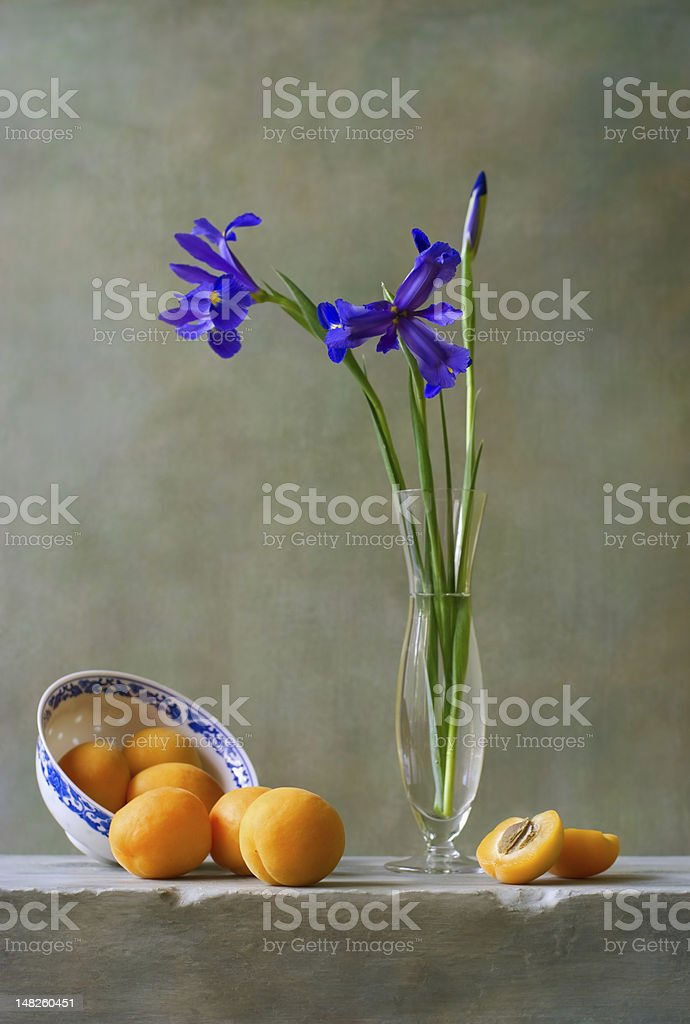 Still life with irises stock photo