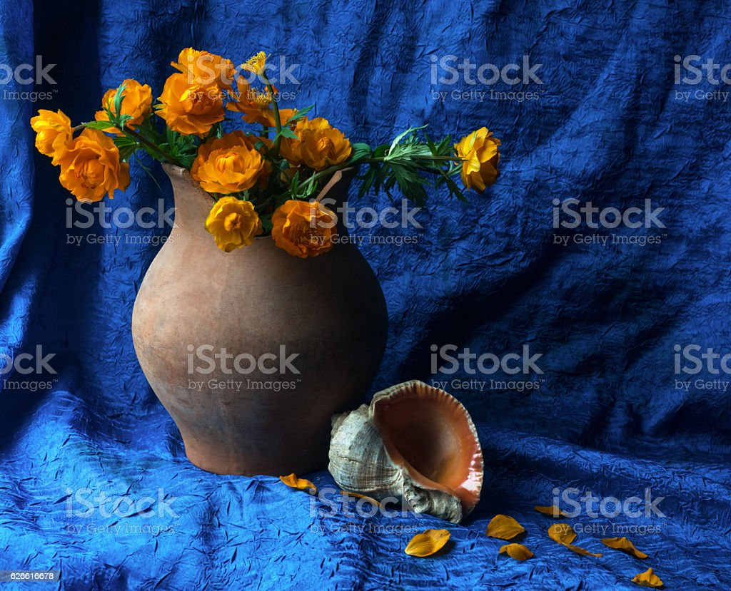 Still life with old crock, globeflower and a shell stock photo