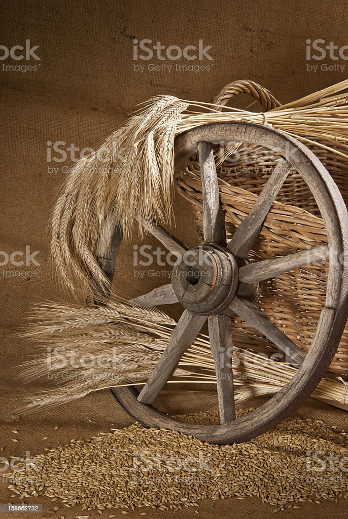 still life with old felloe royalty-free stock photo