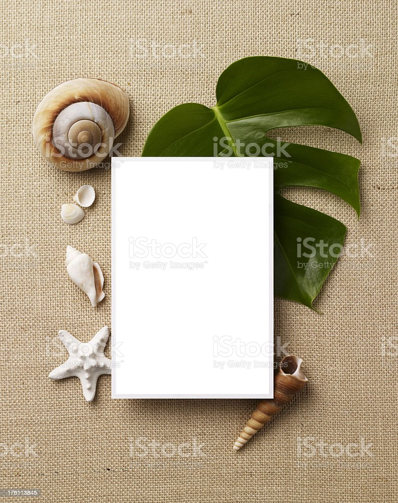 Still Life-Beach B royalty-free stock photo