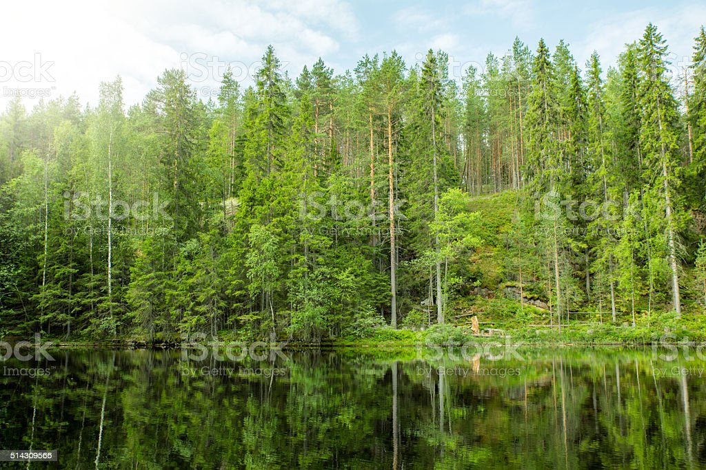 Still Reflection stock photo