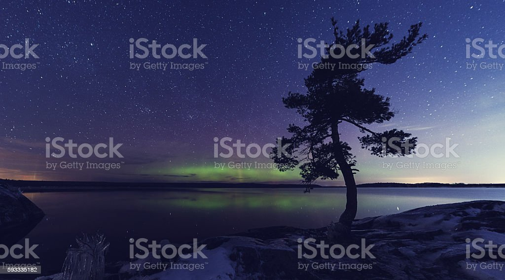 Still Winter Night stock photo