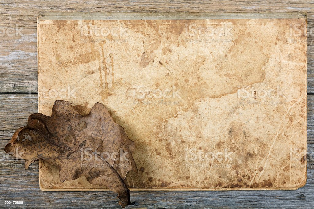Still-life Dry oak sheet on an old writing-book stock photo