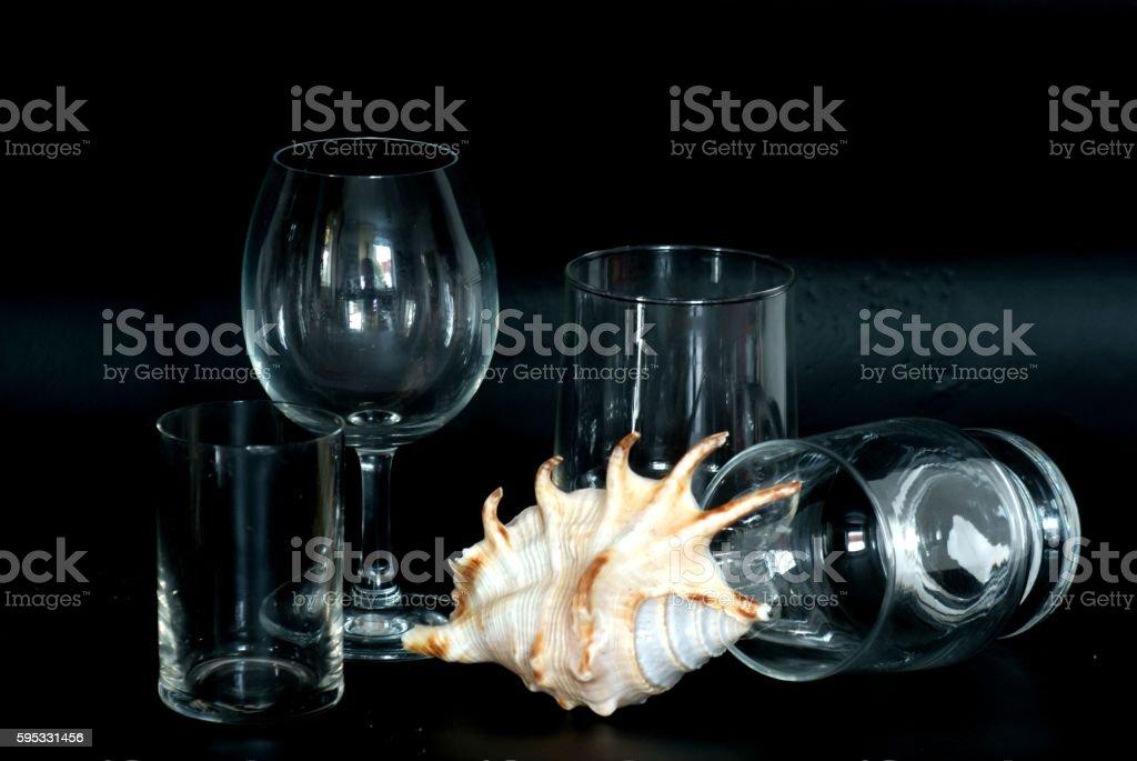 still-life,shell stock photo