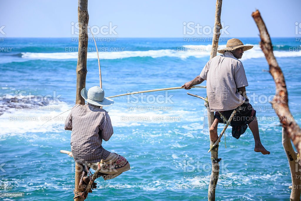 stilt fishermen of Sri Lanka (traditional fishing) stock photo