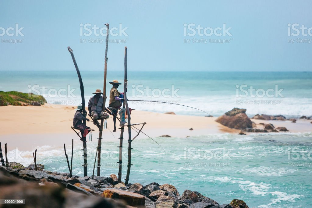 Stilt fishermen of Sri Lanka stock photo